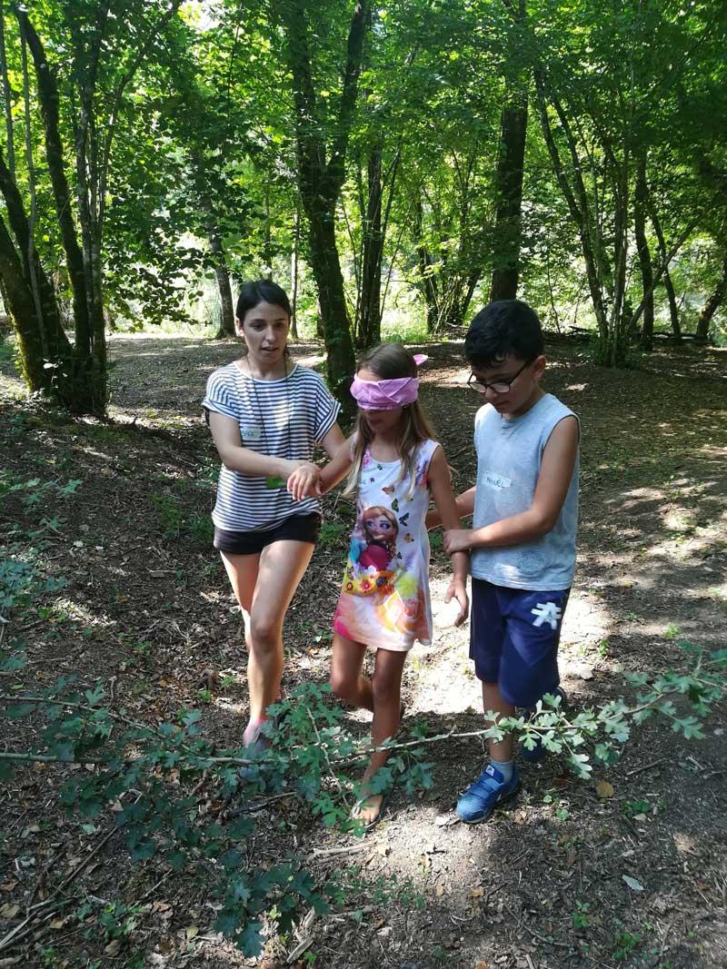 Kids Forest Lucca Bimbi